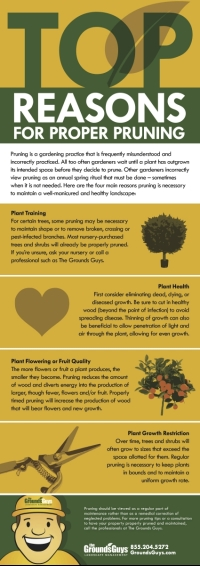 Top Reasons for Proper Pruning infographic